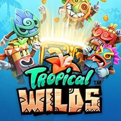 Tropical Wilds